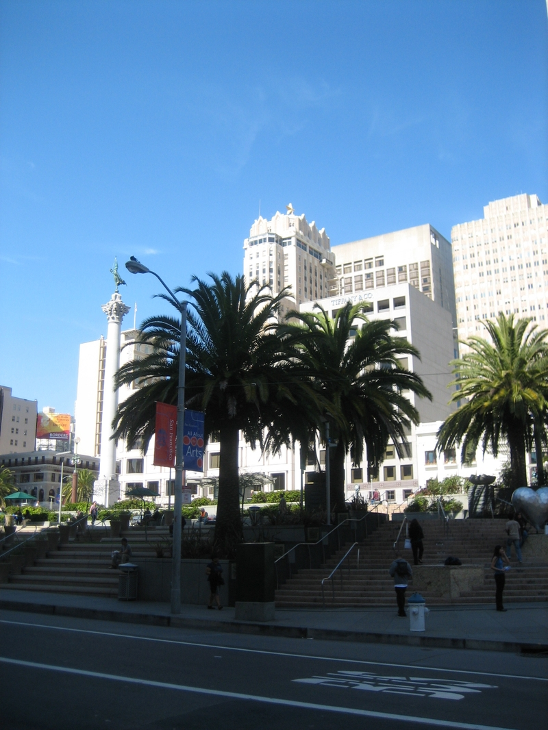 Sf_palm_trees