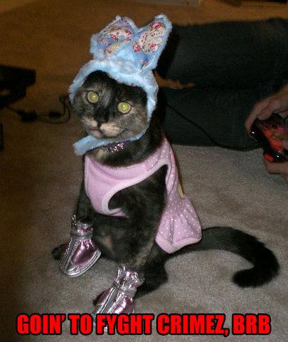 Cat_crime_fighter
